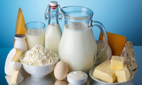 lacteos-yogurt[1]